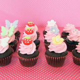 CM05 Mini Girl Sweetest Moments Full Month Mini Cupcake Buttercream Fondant