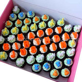 CM02 Mini Safari Sweetest Moments Full Month Mini Cupcake Buttercream Fondant Box of 54