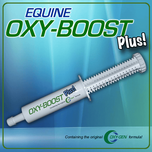 Oxy-Boost Equine