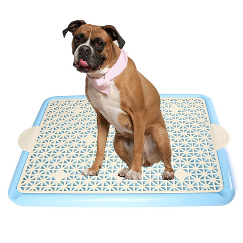 Reusable Puppy Dog Potty Training Toilet Pad Holder