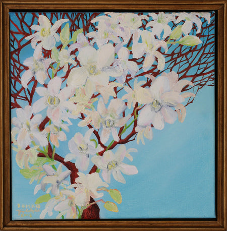 Living Wonder: White Orchids (SOLD)