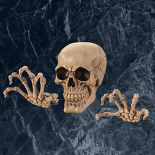 Spooky Skeleton Wall Decor Set - Bodhi Crave