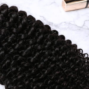 2 Bundles With Lace Closure Malaysian Human Hair Kinky Curly Hair Weave With Closure