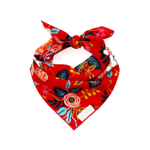 Clothes Companion Ella Classic-Tie Bandana for Dog Puppies and Pets