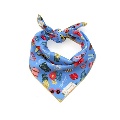 Clothes Companion Getaway Classic-Tie Bandana for Dog Puppies and Pets