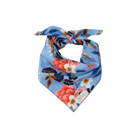 Clothes Companion Cleo Classic Tie Dog Bandana