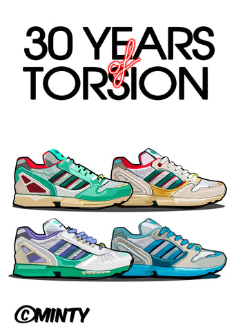 30 years of torsion Print