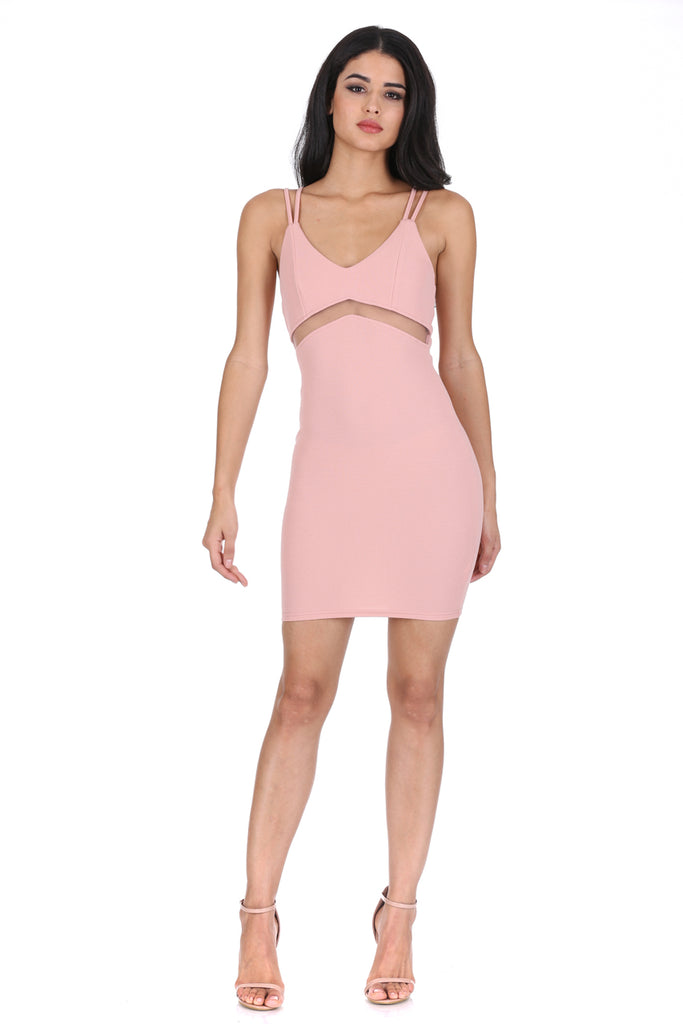 Blush Mesh Bodycon Mini Dress