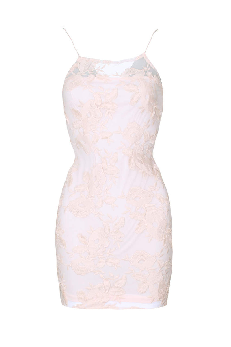 Blush Floral Mesh Embroidered Bodycon Dress