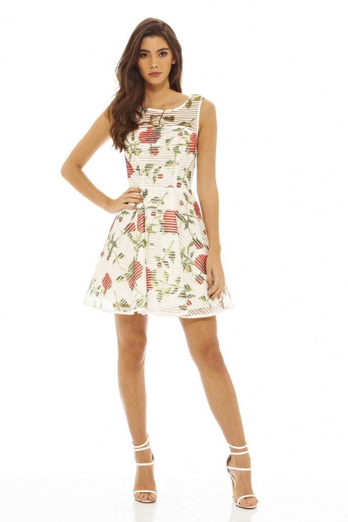 Rose Printed Skater Dress