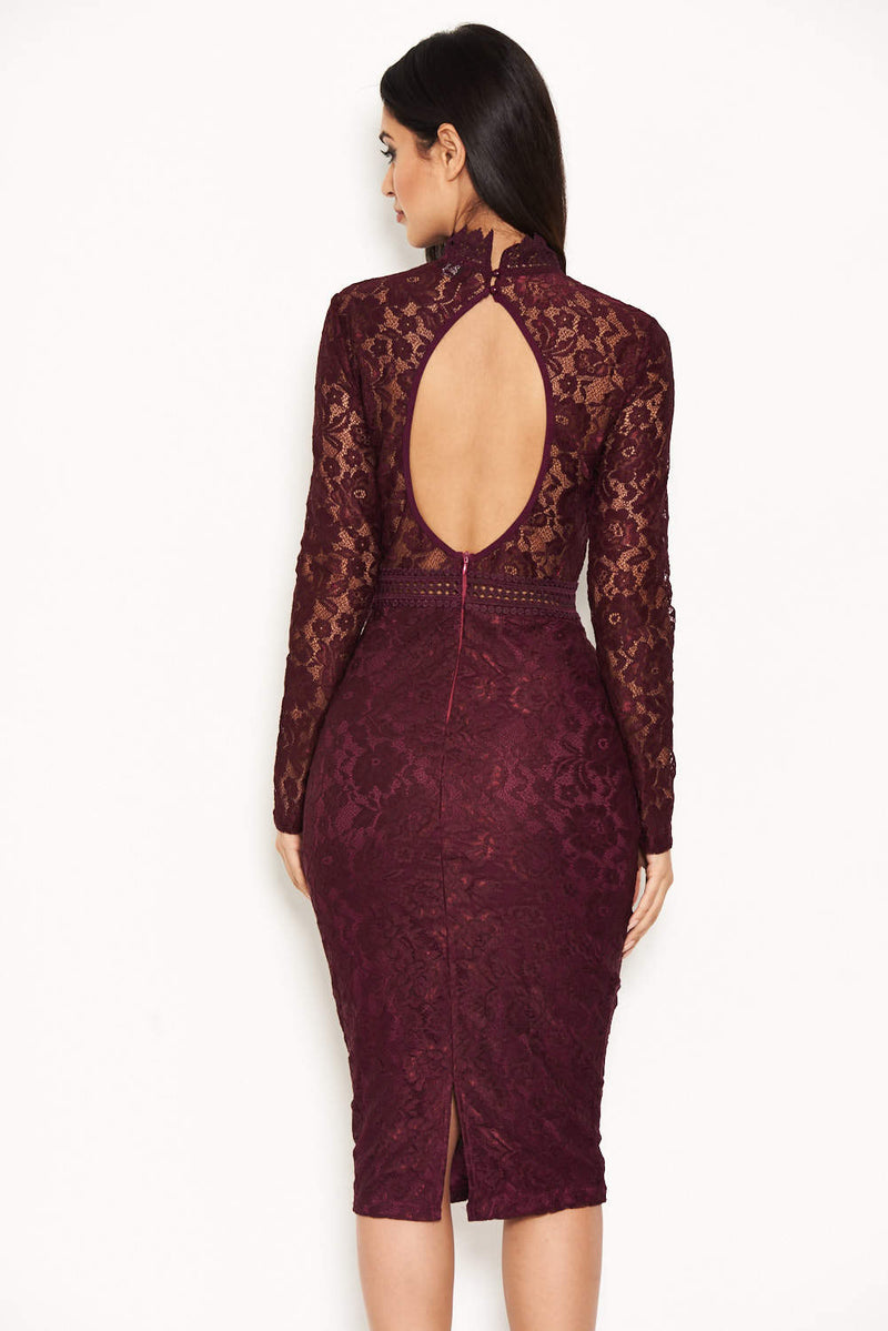 Plum High Neck Lace Dress With Frill Hem