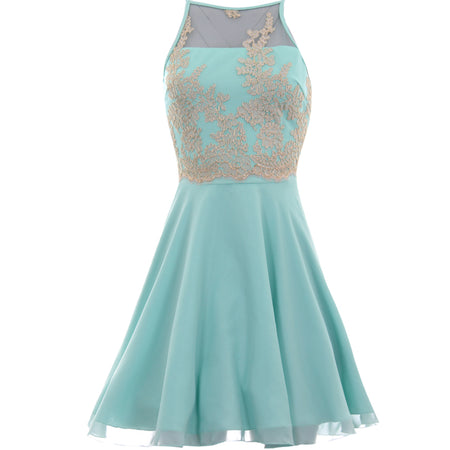 Mint Green Mesh Gold Embroidered Skater Dress
