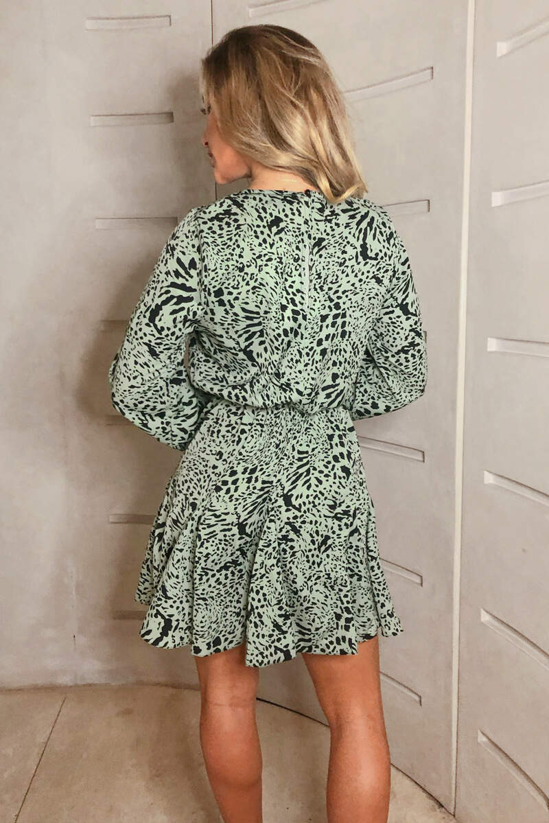 Mint Printed Pleated Skirt Skater Dress
