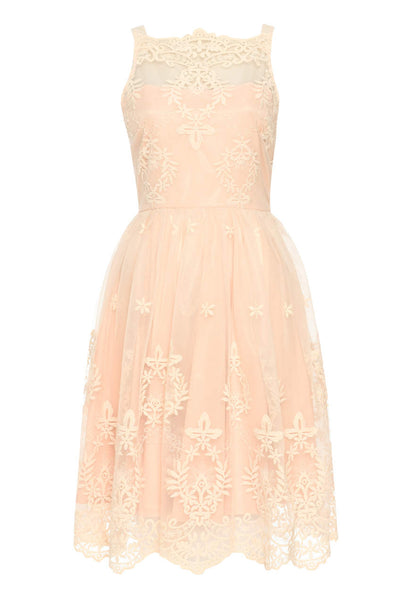 Nude Lace Detail Dress With Full Skirt