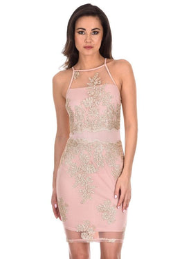 Pink And Gold Mesh Embroidered Dress