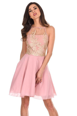 Pink Mesh Gold Embroidered Skater Dress