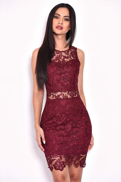 Plum Crochet Embroidered Mini Dress