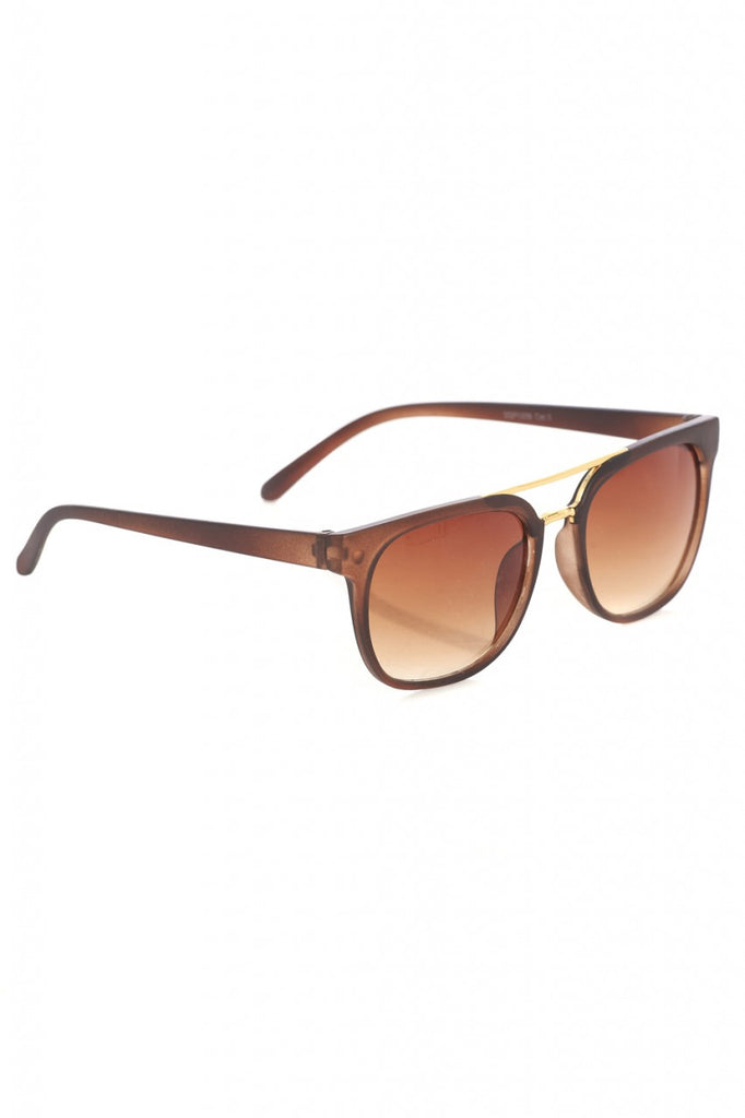 Brown Wayfarer Sunglasses