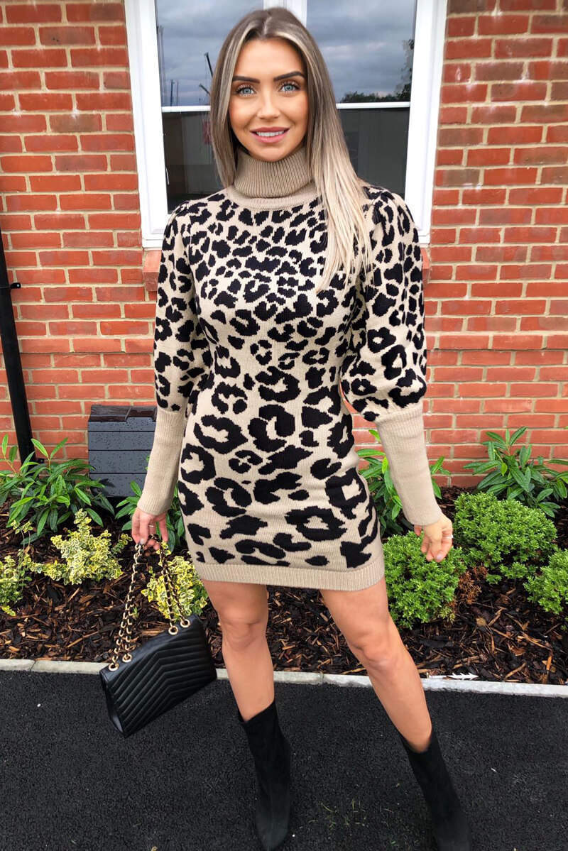 Stone Animal Print Knitted Dress