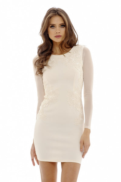 Nude Lace Feature Bodycon Dress
