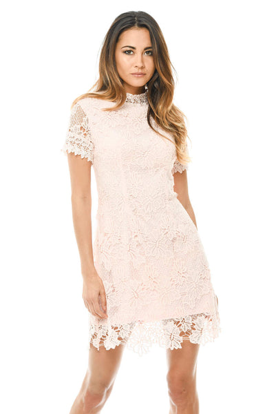 Blush High Neck Lace Dress