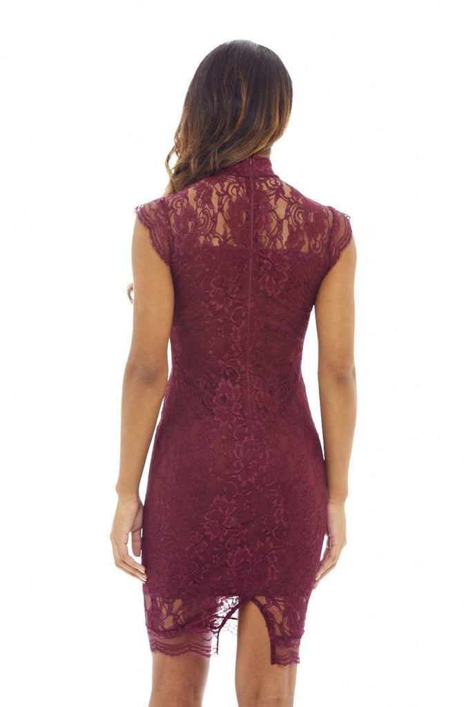 Plum Bodycon Dress with  Lace  and High Neck Capped Sleeves
