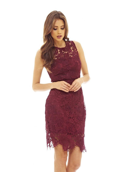 Red Wine Lace Crochet Dress with Sleeveless Detail