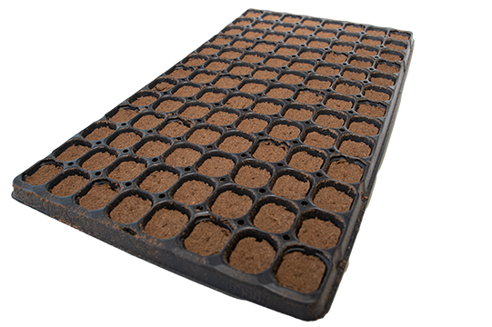 Growbox Plug - Karton à 12 Trays 104 Stk.