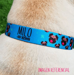 Collar PetLover - Tropical Grabado 2