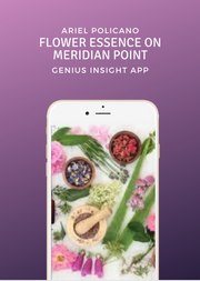Flower Essence on Meridian Point - INSIGHT HEALTH APPS