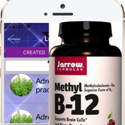 Customized Libraries: Genius Insight: Master Methylation and Thrive! - INSIGHT HEALTH APPS