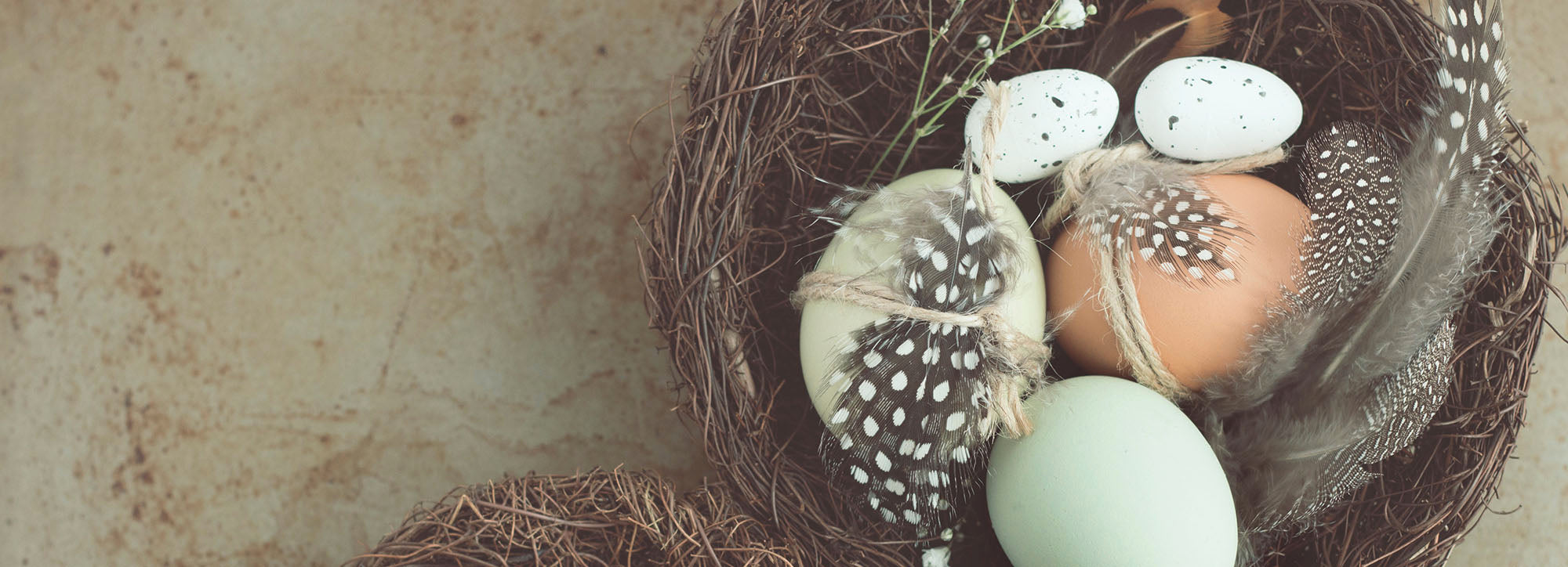 How to Throw a Zero Waste Easter Gathering   BuyMeOnce