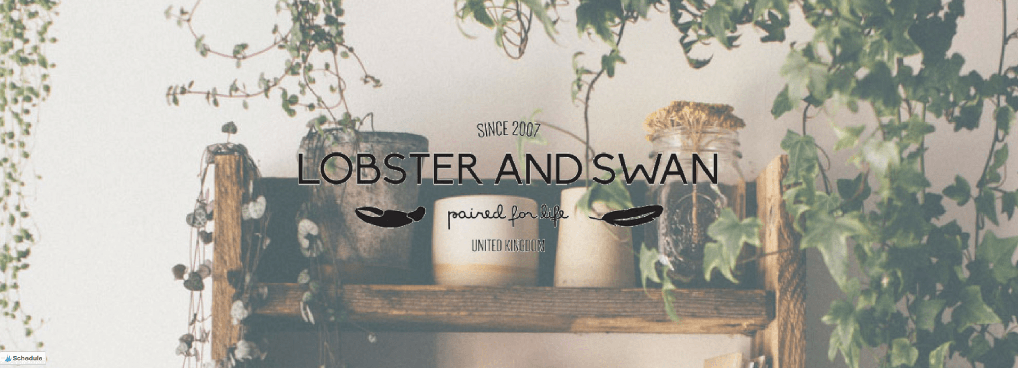 Blogger Spotlight: Lobster & Swan