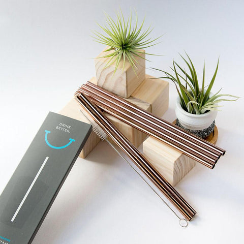 4 Pack Reusable Stainless Steel Straws