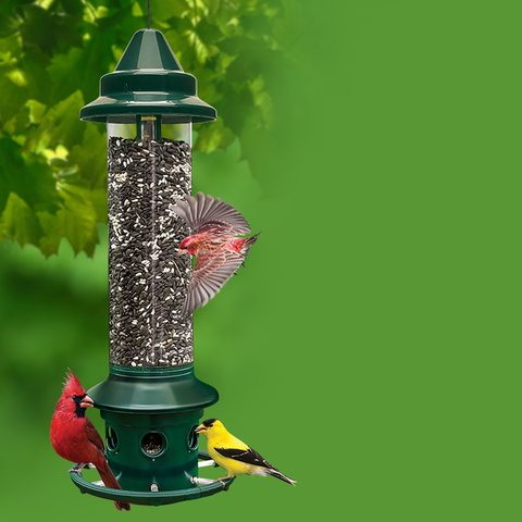 Squirrel Buster Plus High Capacity Birdfeeder