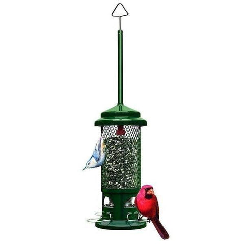 Squirrel Buster Standard Bird Feeder