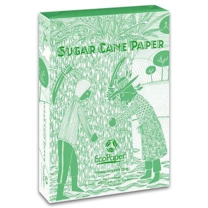 Sugar Cane Copy Paper, 500 Sheets
