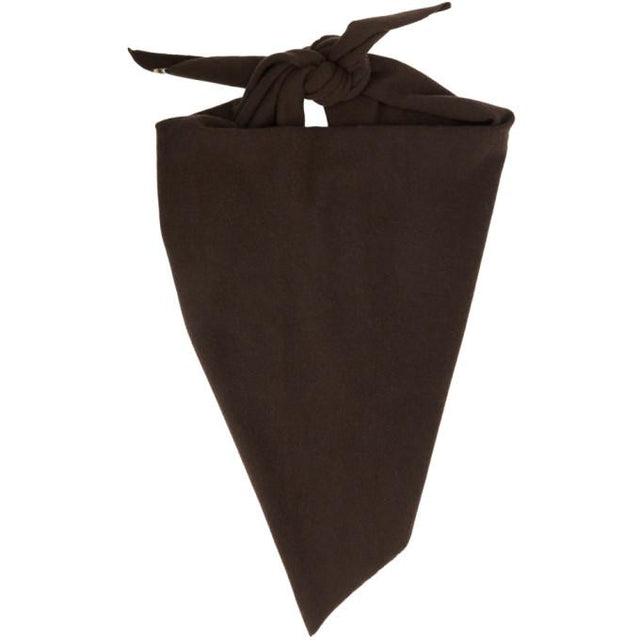 extreme cashmere Brown Cashmere Triangular Witch Scarf