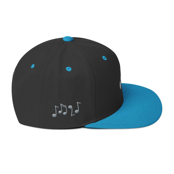Acoustic Guitars • Snapback Hat
