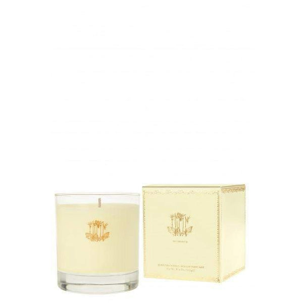 Calypso St. Barth Mimosa Candle-Calypso St Barth-Oak Manor Fragrances