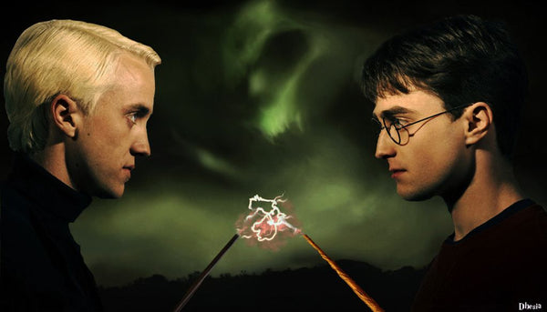 harry vs drago