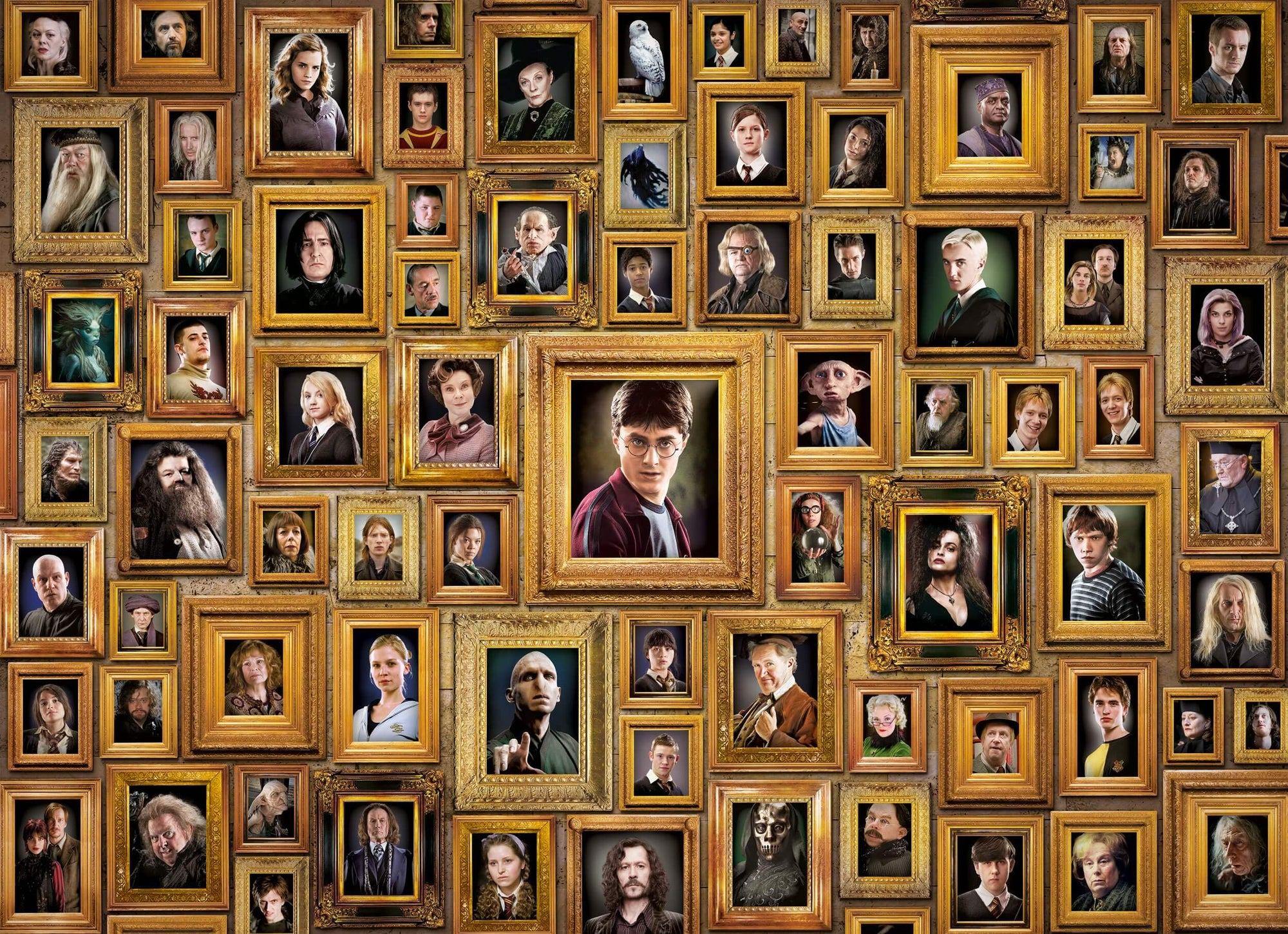 PUZZLE PORTRAITS IMPOSSIBLE - HARRY POTTER