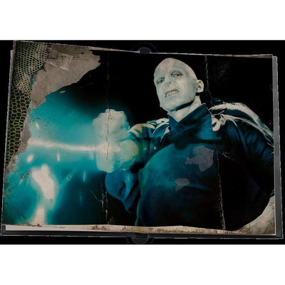 CARNET COLLECTOR LUMINEUX VOLDEMORT - HARRY POTTER