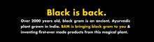 Load image into Gallery viewer, BAM Snacks Black Gram Pasta - Rotini (Pack of 12)