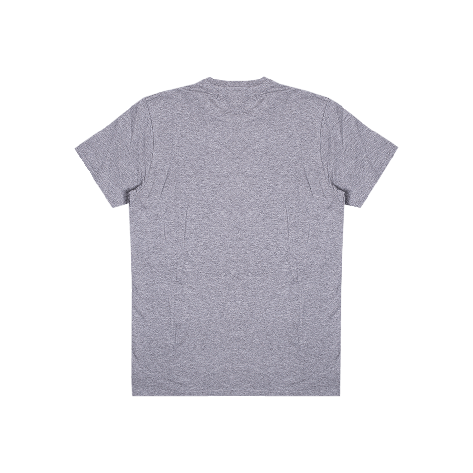 Trademark TS - Grey