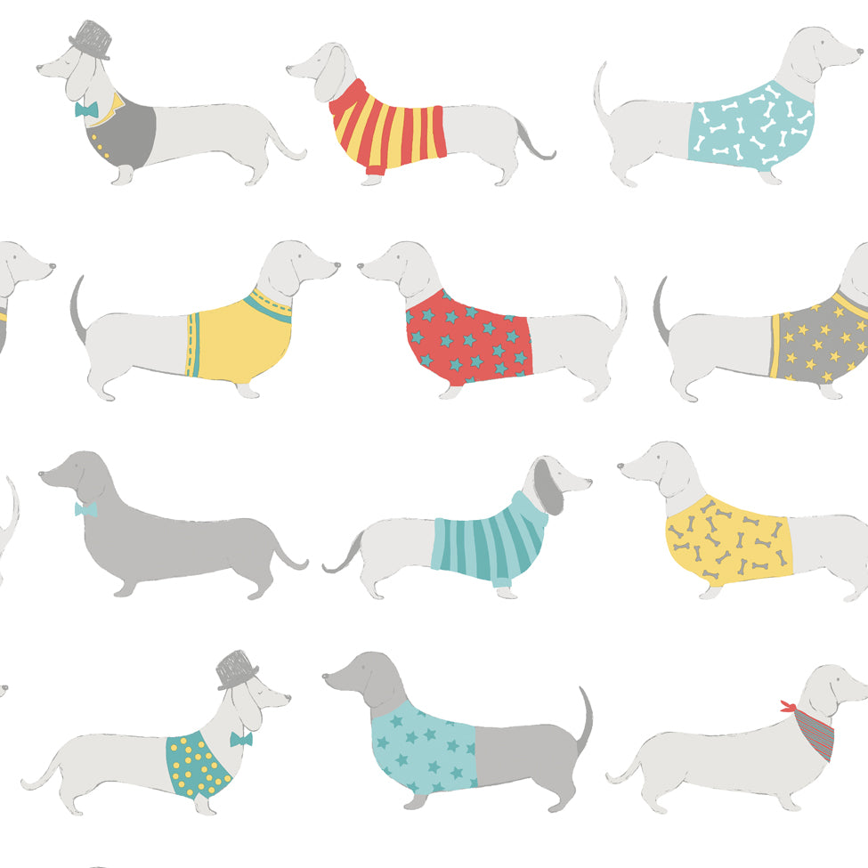 Multi silly sausage dogs on white wallpaper