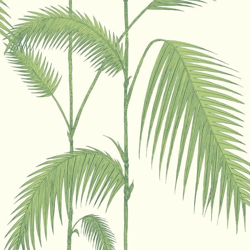 Green and white palm leaves