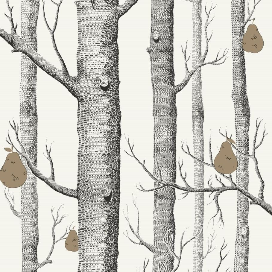 Charcoal, bronze and parchment woods and pears