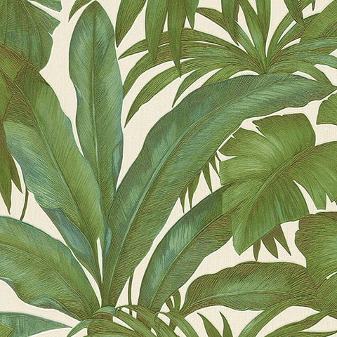 A S Creation Wallpapers Versace Green Palm Leaf Wallpaper