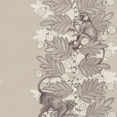 Cole and Son Wallpapers Ardmore Stone / White Acacia Wallpaper